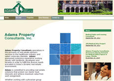 Our web design for Adams consultants.